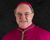 Bishop Michael Mulvey